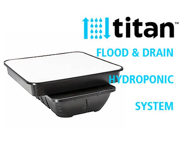 TTITAN(タイタン)