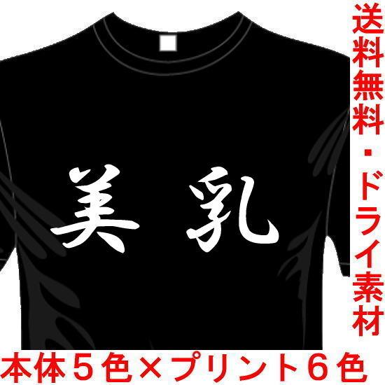 おもしろ漢字Tシャツ 美乳 送料無料