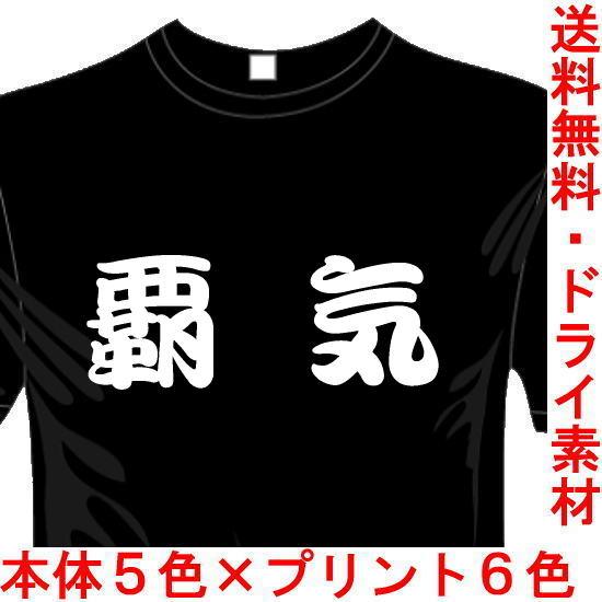 おもしろ漢字Tシャツ 覇気  送料無料