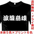 おもしろ漢字Tシャツ 涙腺崩壊 アニメシリーズ 送料無料