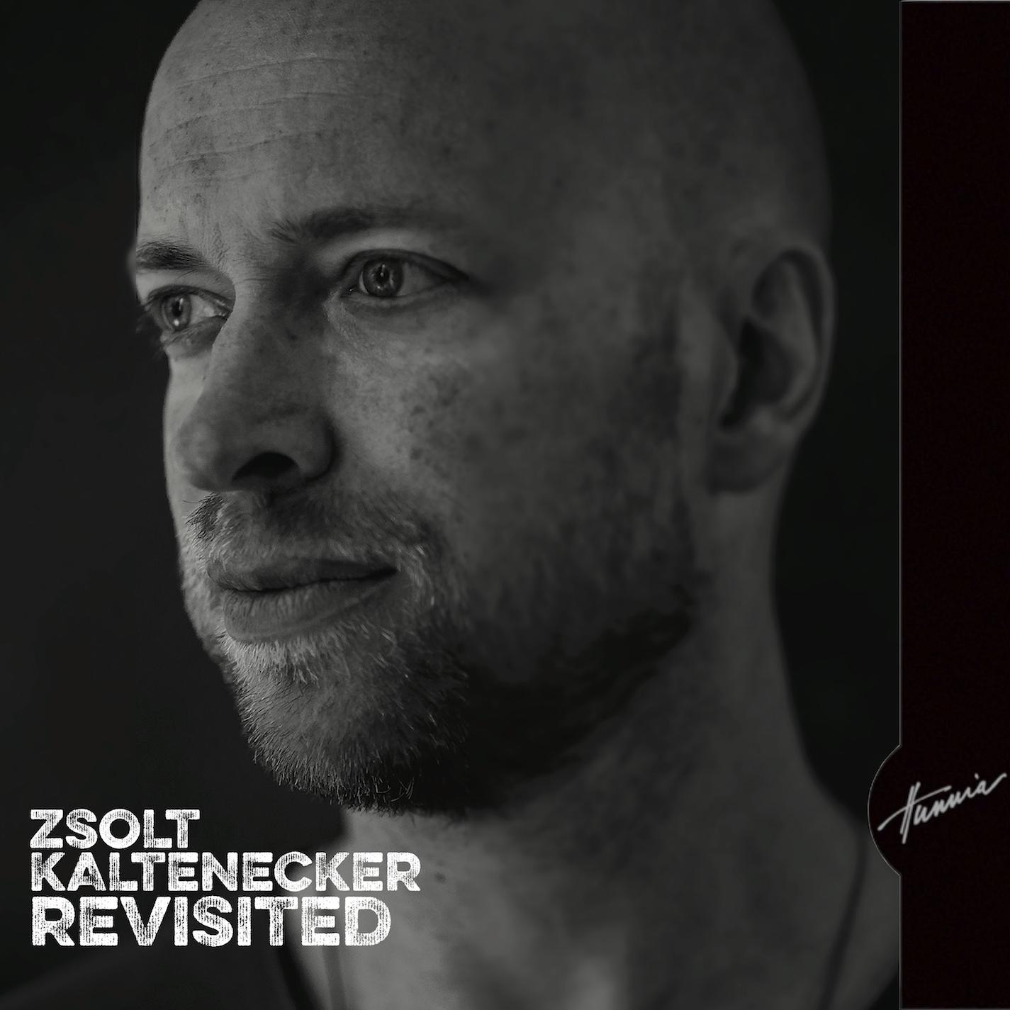 Kaltenecker Zsolt: Revisited 【予約受付中】
