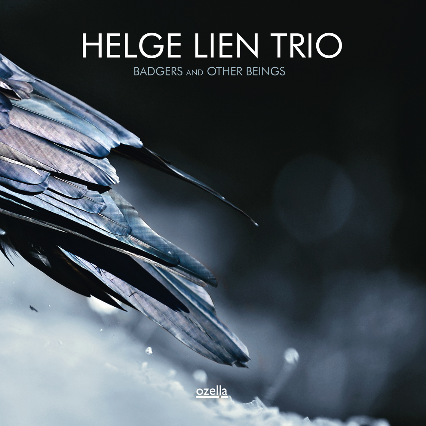 Helge Lien Trio: Badgers And Other Beings 【予約受付中】