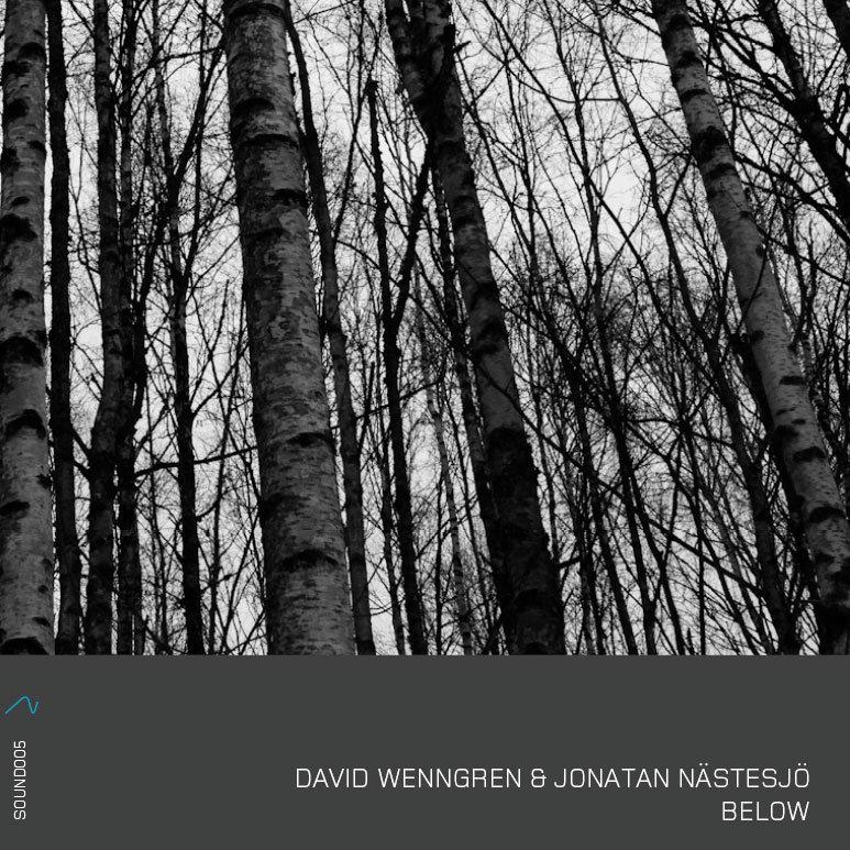 David Wenngren & Jonatan Nastesjo: Below 【予約受付中】