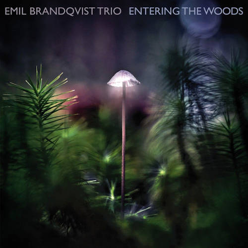 Emil Brandqvist Trio: Entering The Woods 【予約受付中】