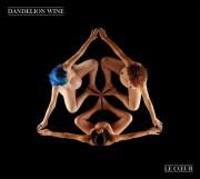 Dandelion Wine: Le Coeur 【予約受付中】