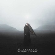 NERATERRAE: The Substance of Perception   【予約受付中】