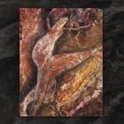 Coil: Swanyard(2CD) 【予約受付中】
