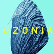 Matthew Collings: Uzonia  【予約受付中】