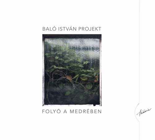 Balo Istvan Projekt: River in its Basin 【予約受付中】