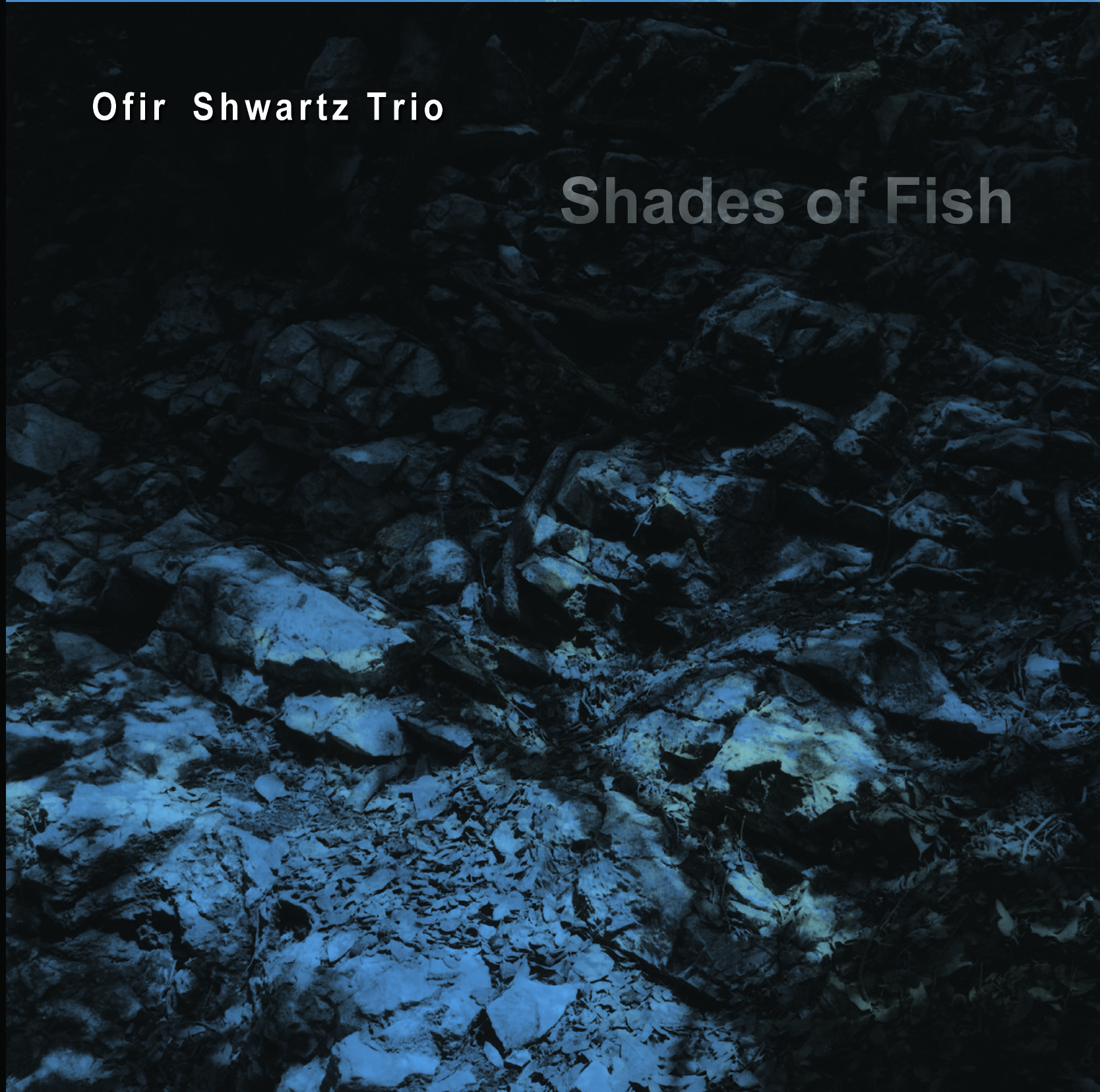 Ofir Shwartz Trio: Shades of Fish 【予約受付中】
