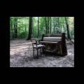 The Eye Of Time: Acoustic II  【予約受付中】