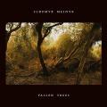Lubomyr Melnyk: Fallen Trees 【予約受付中】