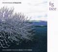 Przemyslaw Straczek: Fig Tree  【予約受付中】