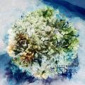 Fleur: Awakening (Limited Edition)