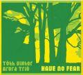 Viktor Toth Arura Trio: Have No Fear  【予約受付中】