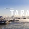 Aapo Heinonen Quintet: Tara  【予約受付中】