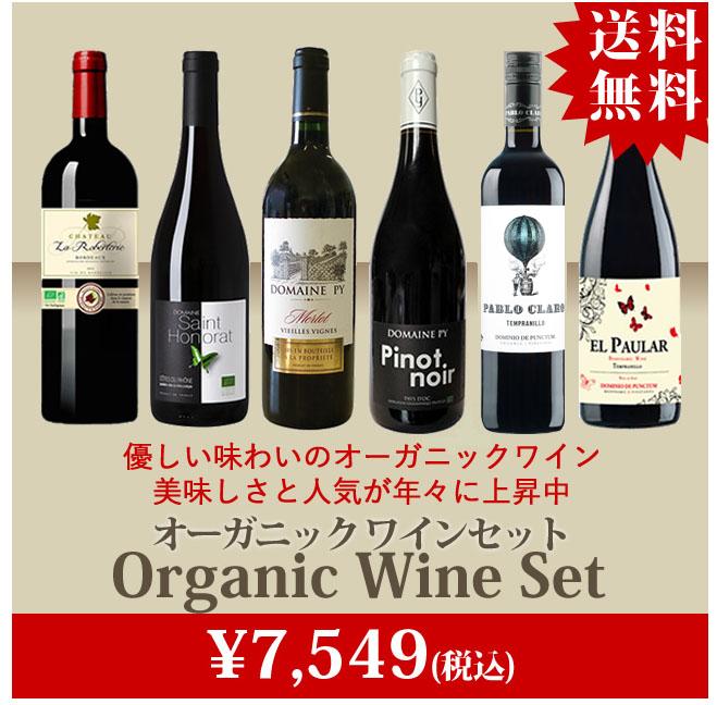オーガニックワイン・セット