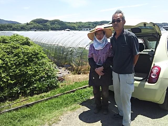 自然農法【自然栽培】 完全無施肥・無農薬・自家採種 熊本県産ヒノヒカリの20年目 玄米5kg