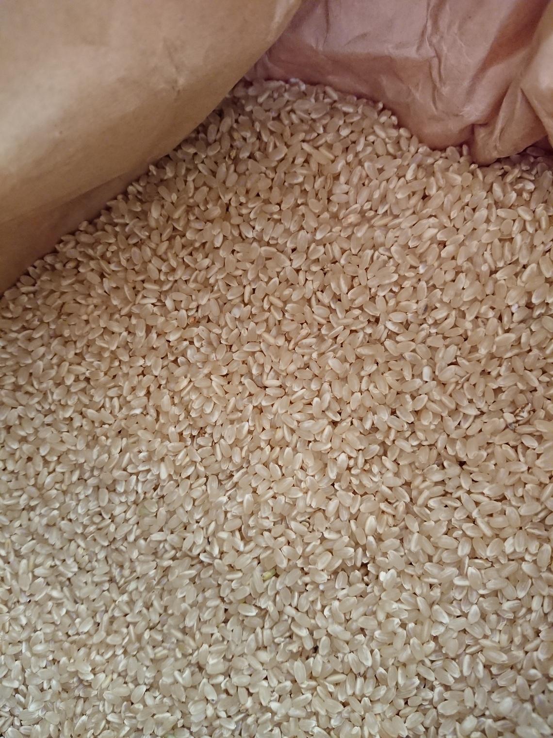 訳あり【自然栽培米】新米 2018 ササニシキの12年自家採種 オーガニック 熊本県産 無肥料無農薬  福間さんの冬期湛水自然栽培米・玄米 5kg