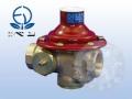 ベン ボイラ用水道用減圧弁 RD25SN-F ストレーナー内蔵 20A