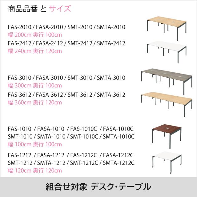 FAS_Option