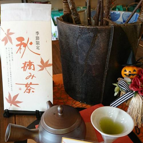 【季節茶】秋摘み茶(55g)