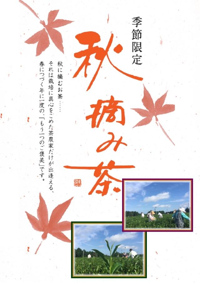 秋摘み茶 55g