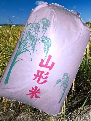 【送料無料】【訳あり】26年産山形県産米使用 生活応援米白米27kg