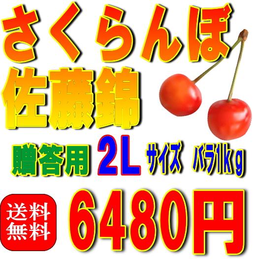 【贈答用・送料無料】さくらんぼ佐藤錦 2Lサイズ バラ詰め 1Kg