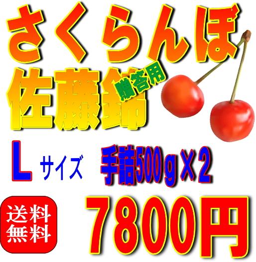 【送料無料】さくらんぼ佐藤錦 Lサイズ 500gパック詰め×2