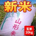 【送料無料】30年産山形県産はえぬき玄米20kg【沖縄別途1000円加算】