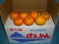 【屋久島産】ポンカン Lサイズ(約60個入り),LLサイズ(約48個入り)10kg 12月10日〜21日【期間限定】