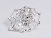 10221542-蜘蛛ピンブローチ