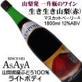 麻屋葡萄酒 生き生き山梨 赤 マスカットベリーA 1800ml一升瓶 富士山ラベル