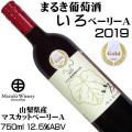 まるき葡萄酒 いろベーリーA 2019 750ml