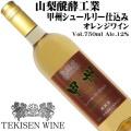 山梨醗酵工業 TEKISEN WINE 甲州シュールリー仕込み・オレンジワイン 2019 750ml [日本ワイン]