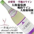 大和葡萄酒 晩酌ワイン 大和葡萄園 白ワイン 一升瓶(1800ml)