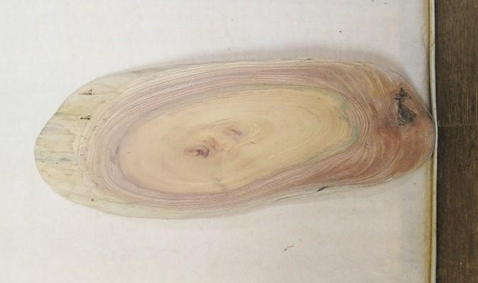 【送料・手数料無料】 山成林業 特小無垢一枚板 KE-516 ケヤキ看板に最適