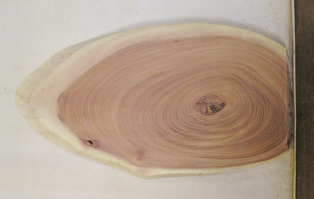 【送料・手数料無料】 山成林業 小型無垢一枚板 KD-570 ケヤキ 小型看板に最適