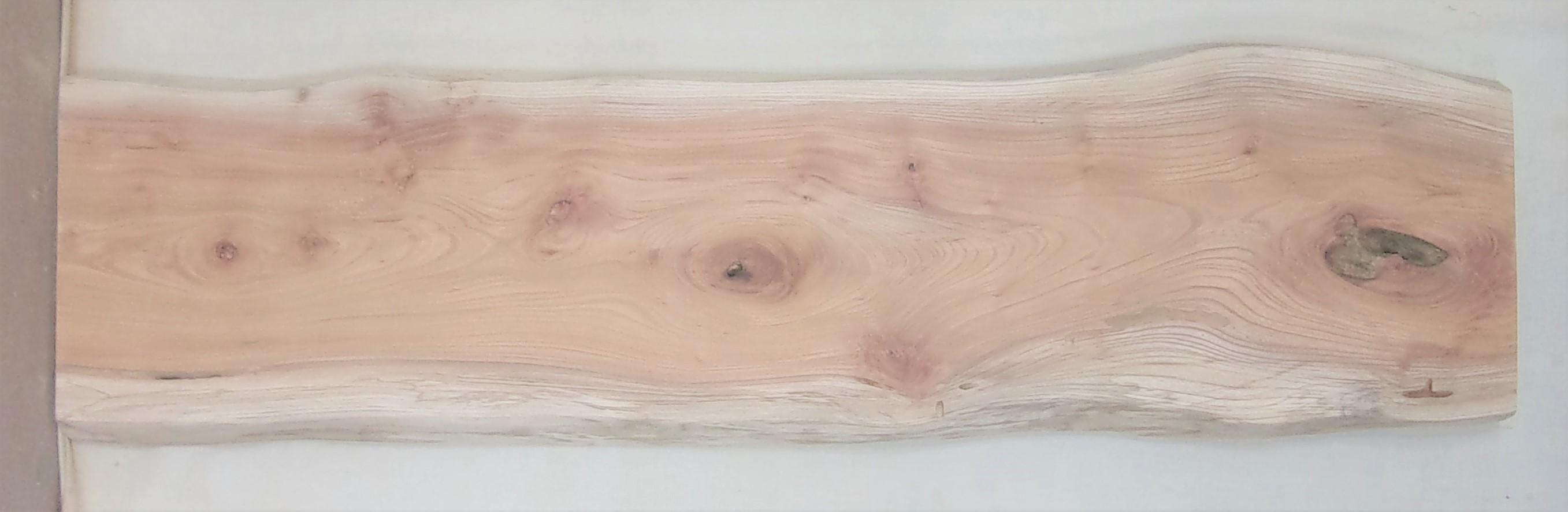 【送料・手数料無料】 山成林業 訳あり特価一枚板 KC-572 ケヤキ 中型看板に最適