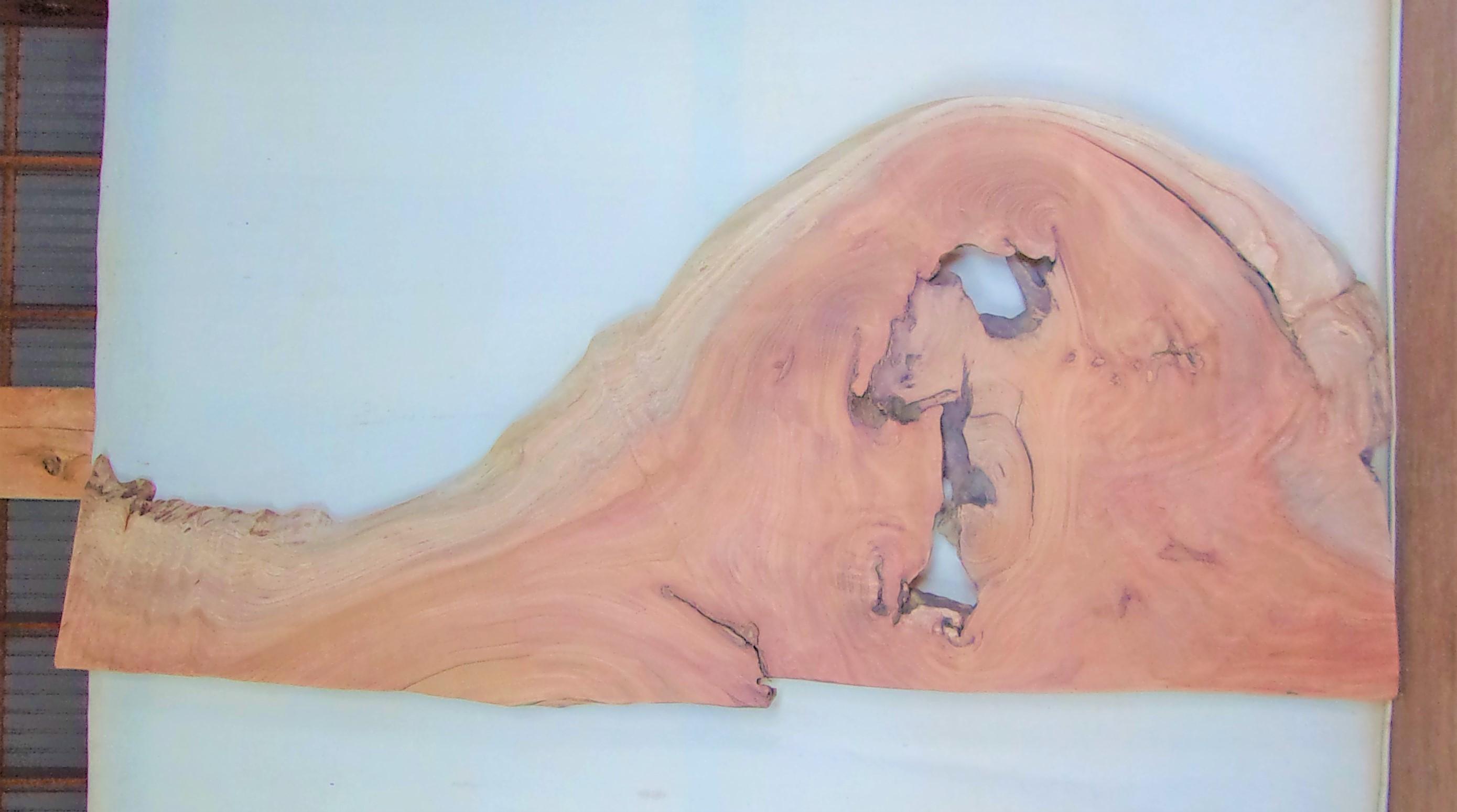 【送料・手数料無料!】 山成林業 大型無垢一枚板 KB-613 ケヤキ 大型看板に最適