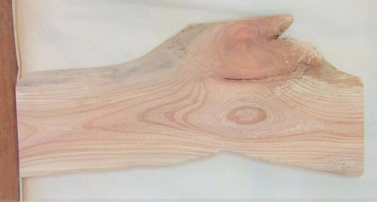 【送料・手数料無料】 山成林業 中型無垢一枚板 KC-635 ケヤキ 中型看板に最適