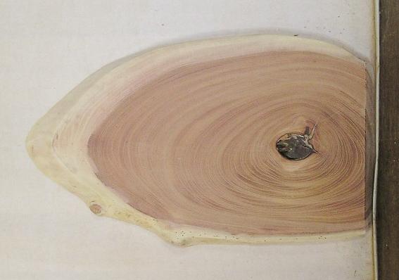 【送料・手数料無料】 山成林業 特小無垢一枚板 KE-571 ケヤキ看板に最適
