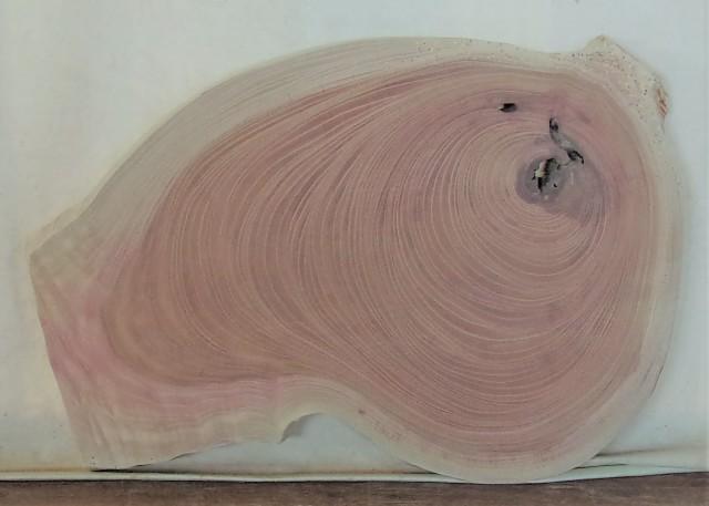 【送料・手数料無料】 山成林業 特小無垢一枚板 KE-583 ケヤキ看板に最適