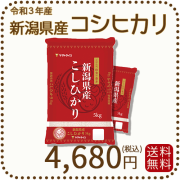新米【令和2年産】【送料無料】白米 新潟県産コシヒカリ 10kg(5kg×2)