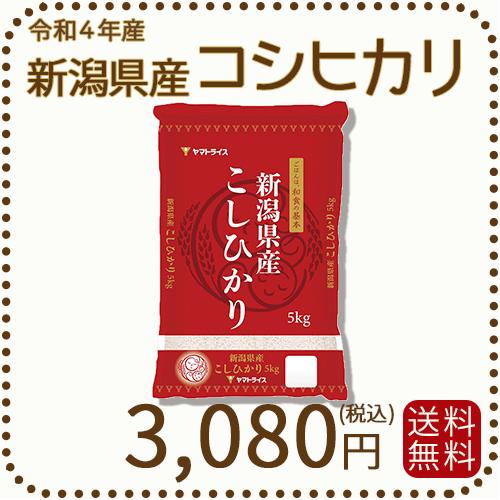 新米【令和2年産】【送料無料】白米 新潟県産コシヒカリ 5kg
