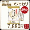 愛知県産コシヒカリ20kg 新米