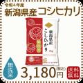 新米【令和2年産】【送料無料】【無洗米】 新潟県産コシヒカリ 5kg
