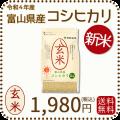 富山県産コシヒカリ玄米2k