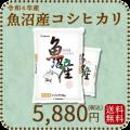 新米【令和2年産】【送料無料】【高級銘柄】 新潟県魚沼産コシヒカリ 10kg(5kg×2袋)